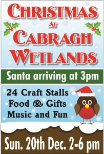 christmas at cabragh wetlands